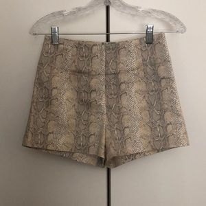 Snake Print High-Waisted Shorts